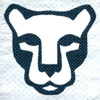 "Penn State Nittany Lions ""shrine face"" logo"