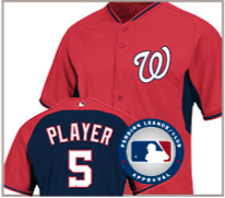Washington Nationals 2014 batting practice jersey