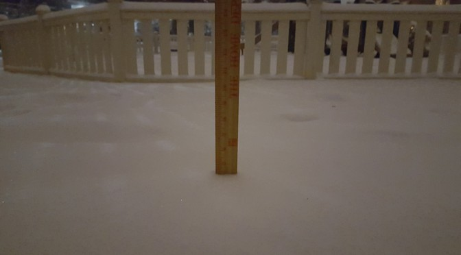 alexandria-va-snow-total-at-740-pm-on-20160122-4dot5-inches