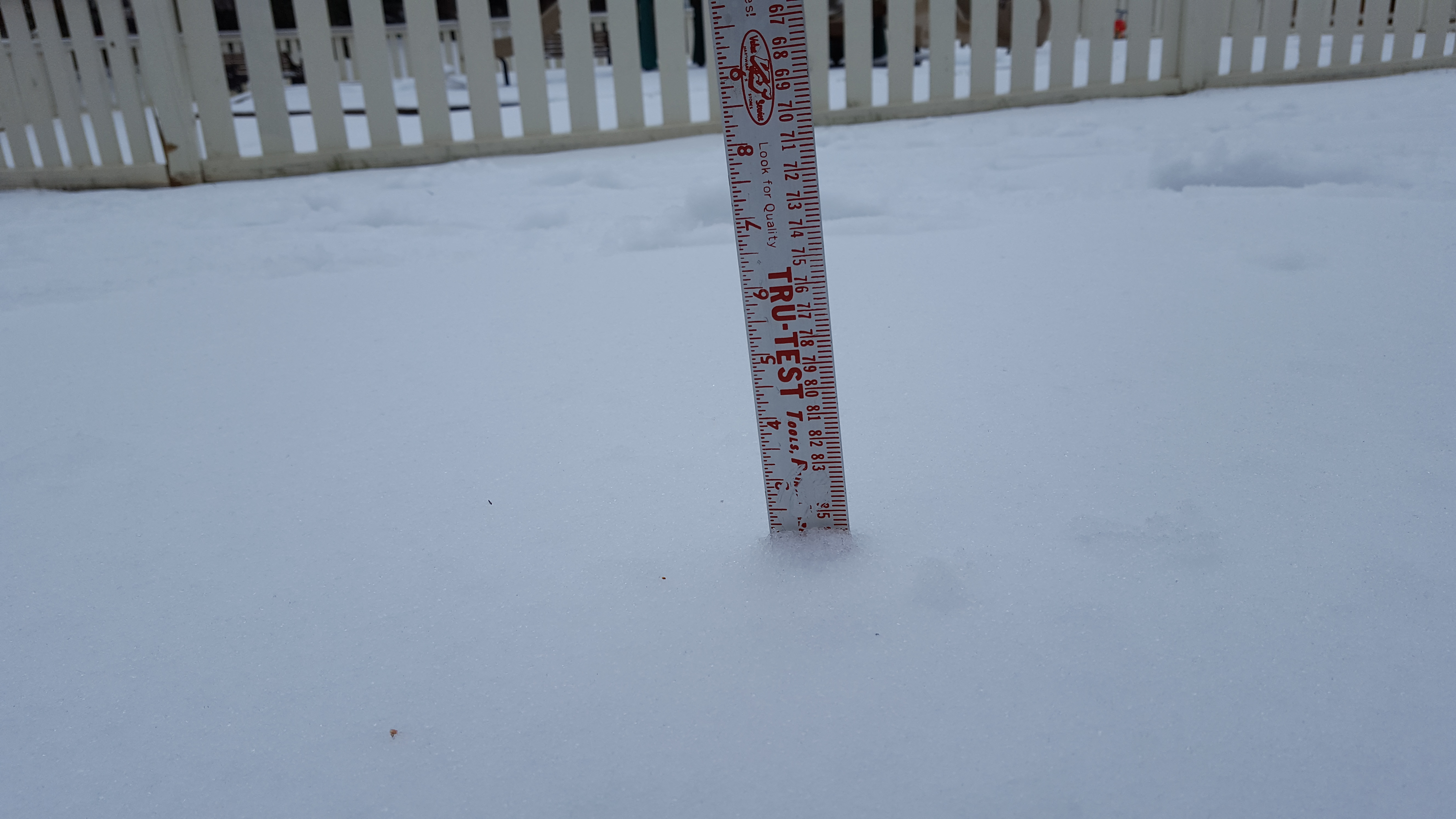 2 inches of snow in Alexandria, Va. on March 14, 2017