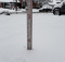 6.5 inches of snowfall in Alexandria, Va. at 10:30 a.m. on January 13, 2019