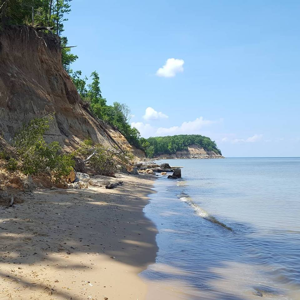 Calvert Cliffs, Lusby, Md.