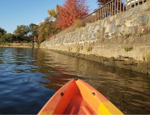 Autumn DC Kayaking